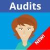 MEG Audit Tool v3.0