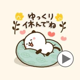 Kitty Panda40
