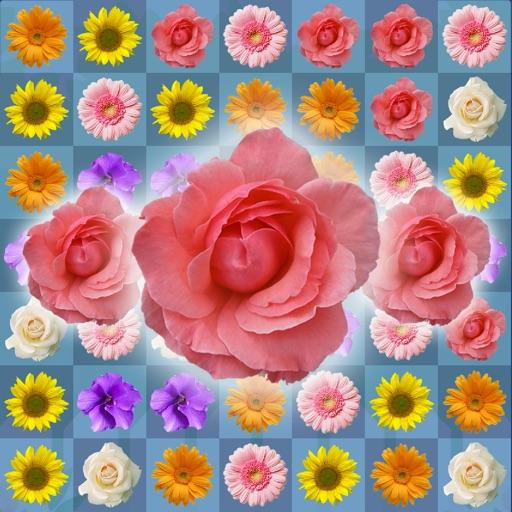 Blossom Link: Floward Connect