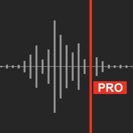 Awesome Voice Recorder X PRO icon