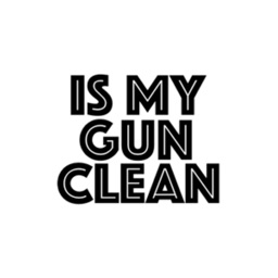 IS MY GUN CLEAN