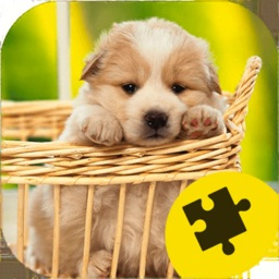 Cute Dogs Puppy Jigsaw Puzzle