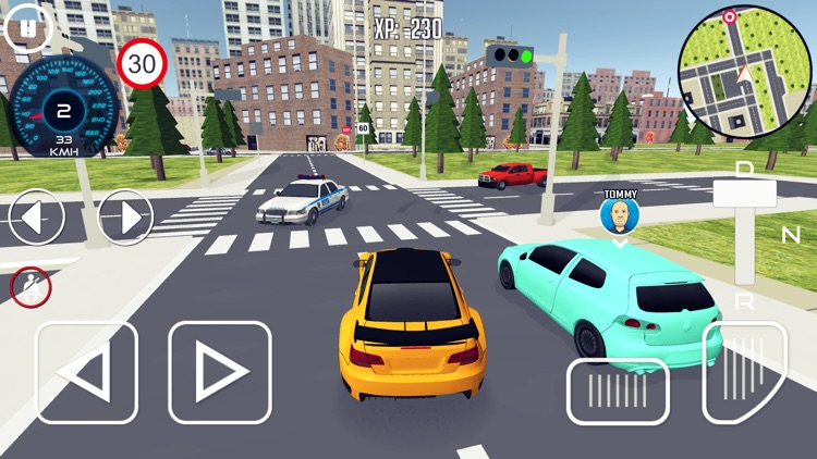 Driving School 3D Simulator screenshot-5