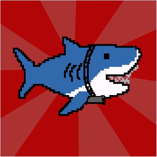 Shark Shooting