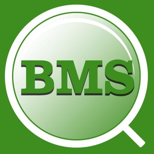 BMS HSE&Q