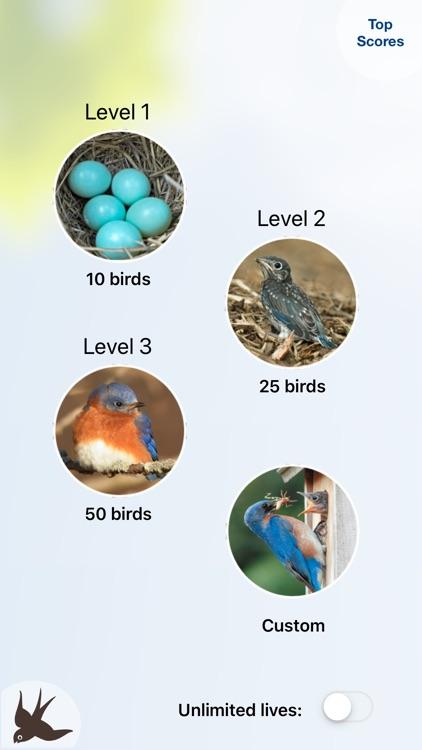 Chirp! Bird Songs & Calls USA screenshot-5