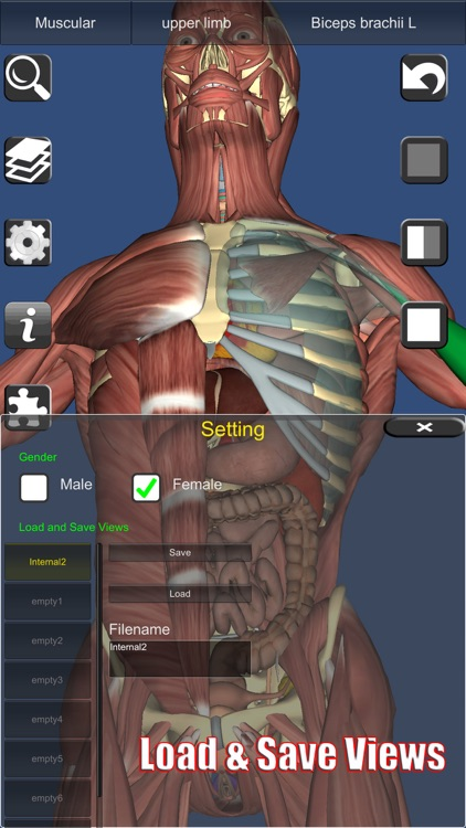 3D Anatomy Learning screenshot-8