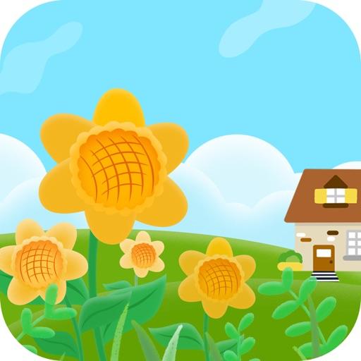 梦幻乐园-养花种花园艺必备