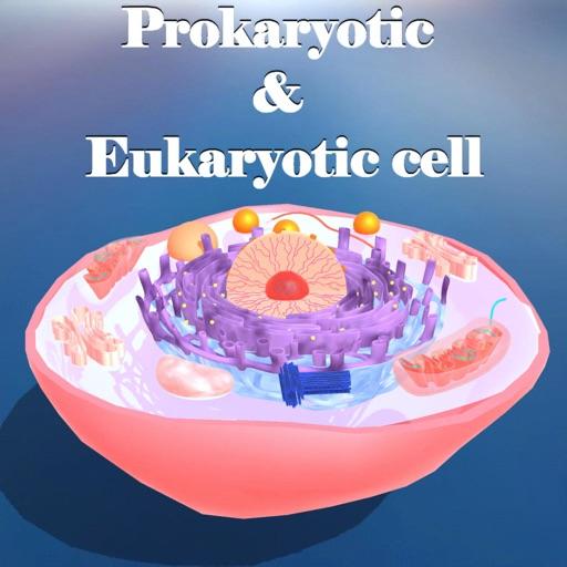 Prokaryotic & Eukaryotic cell icon