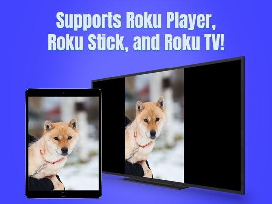 Air Mirror for Roku TV screenshot 6