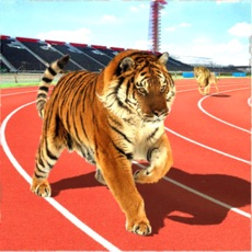 Activities of Wild Animal Racing Missions