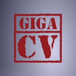 Your best resume with giga-cv