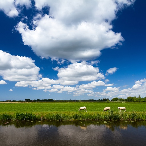Weather in the Netherlands HD
