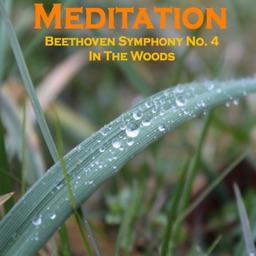 Meditation - Beethoven 4 Woods