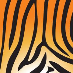 Asset Tiger
