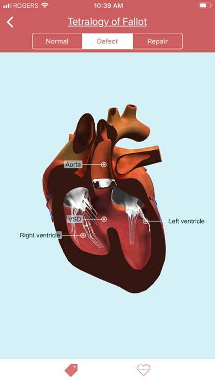 eMurmur Heartpedia screenshot-4