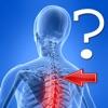 Anatomy Spine Quiz - iPadアプリ