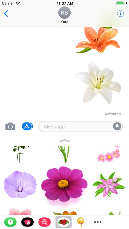 Flowers Collection Stickers screenshot-3