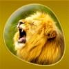 Animals 360 Gold - 値下げ中の便利アプリ iPhone