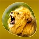 icone Animals 360 Gold