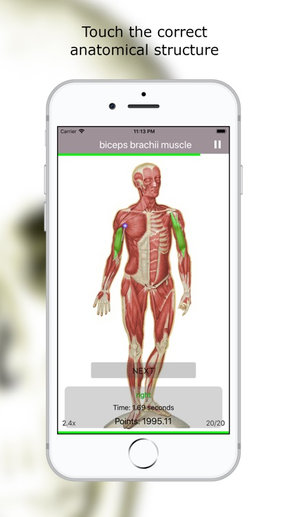 Anatomy Quiz Premium screenshot-1