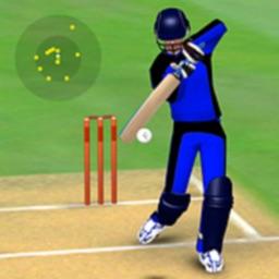 Smashing Cricket: Championship