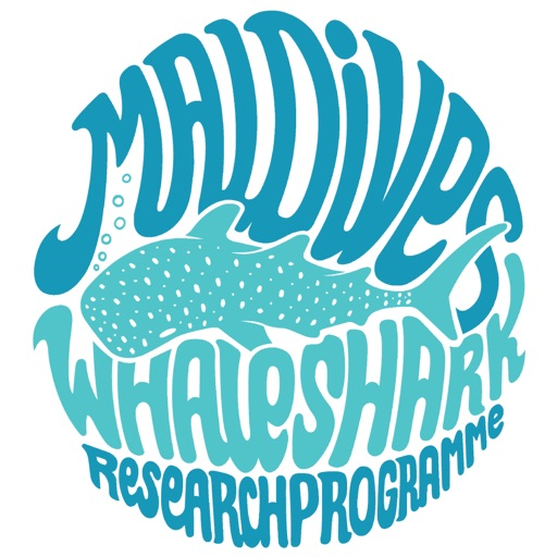 Whale Shark Network Maldives