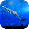 沖縄美ら海水族館 - iPhoneアプリ