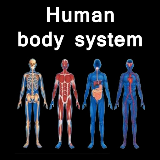 The Amazing Human System