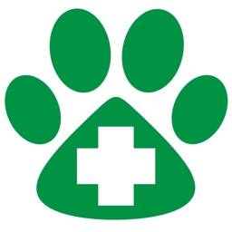 Veterinary Flashcards