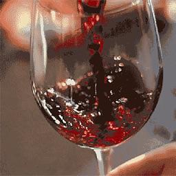 WineShaker
