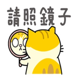 貓咪黃阿瑪