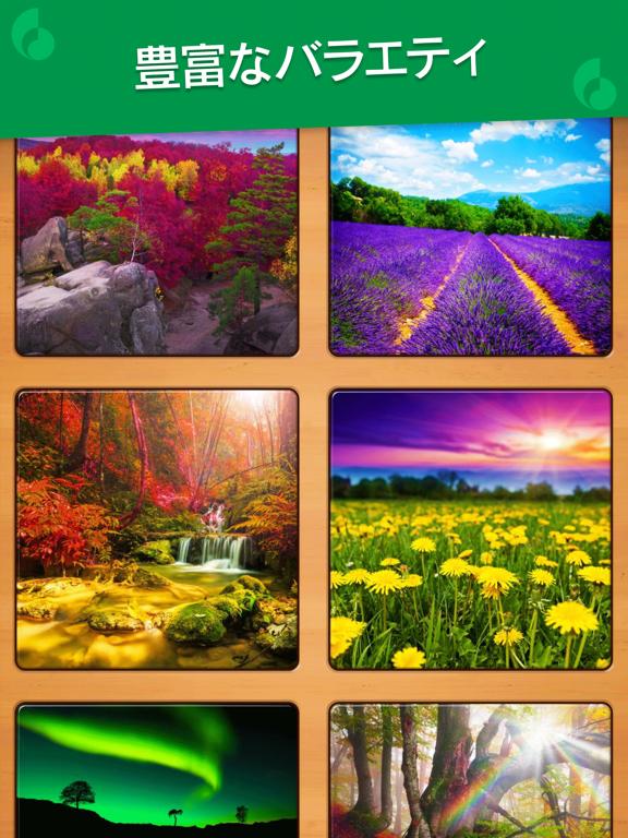 Jigsaw Puzzle: カラーアートジグソーパズルのおすすめ画像4