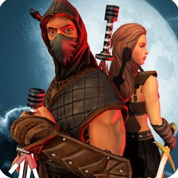 Shadow Sword Fight Simulator