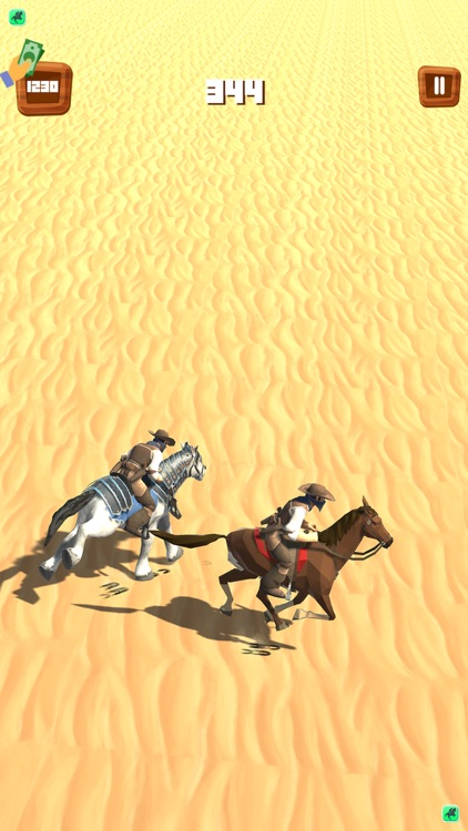 Wild Horse Chase - Star Stable