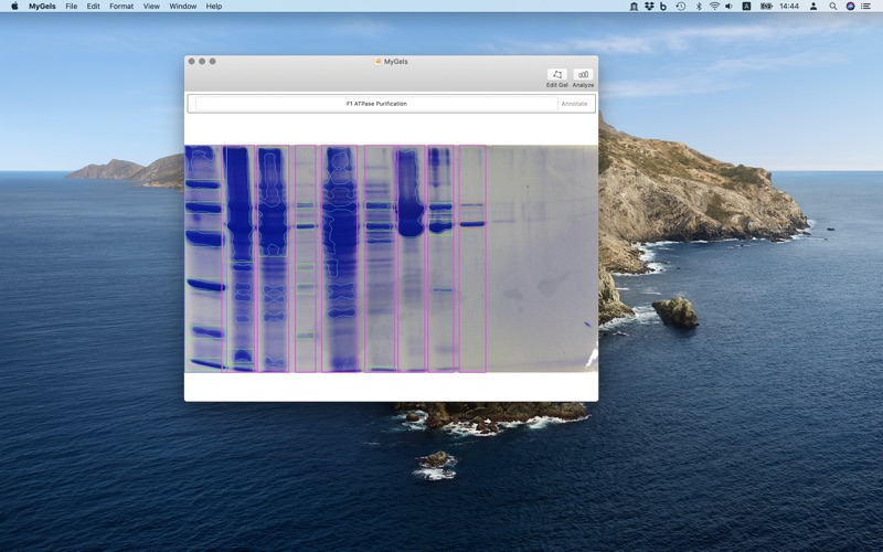 MyGels скриншот программы 1
