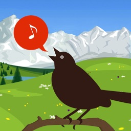 Chirp! Bird Songs UK & Europe