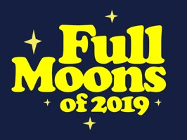 This fun sticker pack has so many cute moons to help celebrate full moons throughout the year