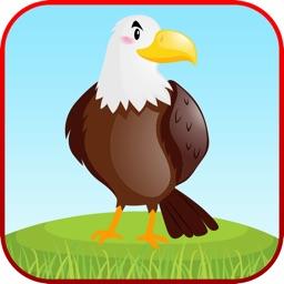 Bird Sounds Fun Learning Games