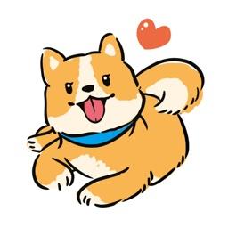 狗狗太可爱了