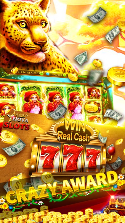 Slots Casino-Casino Slots Game screenshot-3