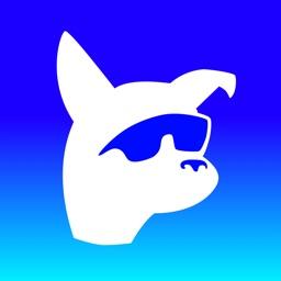 Dog Optics