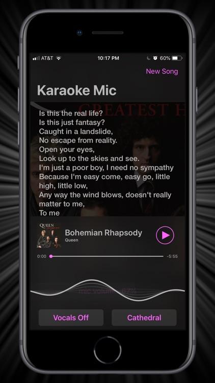 Karaoke Mic | VonBruno