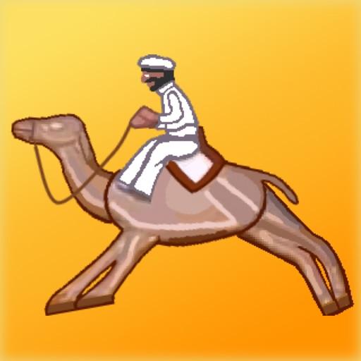 Camel Racing at the fairground