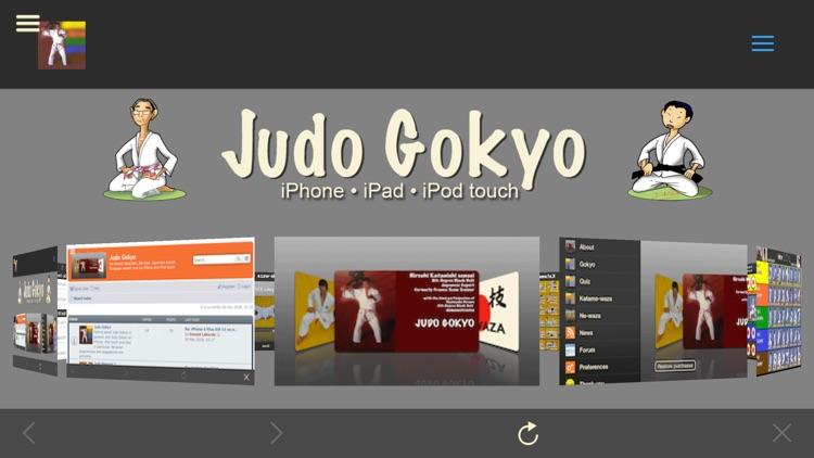 Judo Gokyo screenshot-8