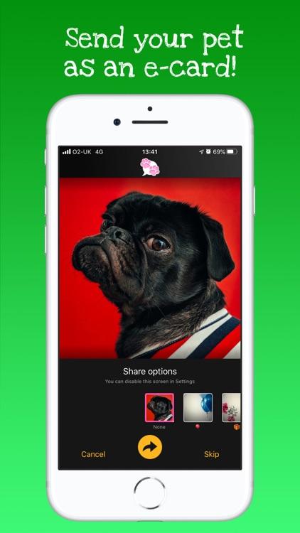 My Talking Pet screenshot-4