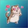 Cute Funny Cat Sticker