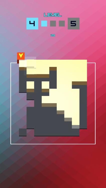 Pixel In