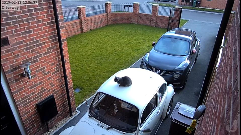 Screenshot #3 for CCTV Viewer