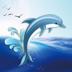 62.蓝海豚 - 北美华人门户APP